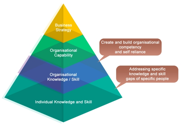 Organisational learning no arrow